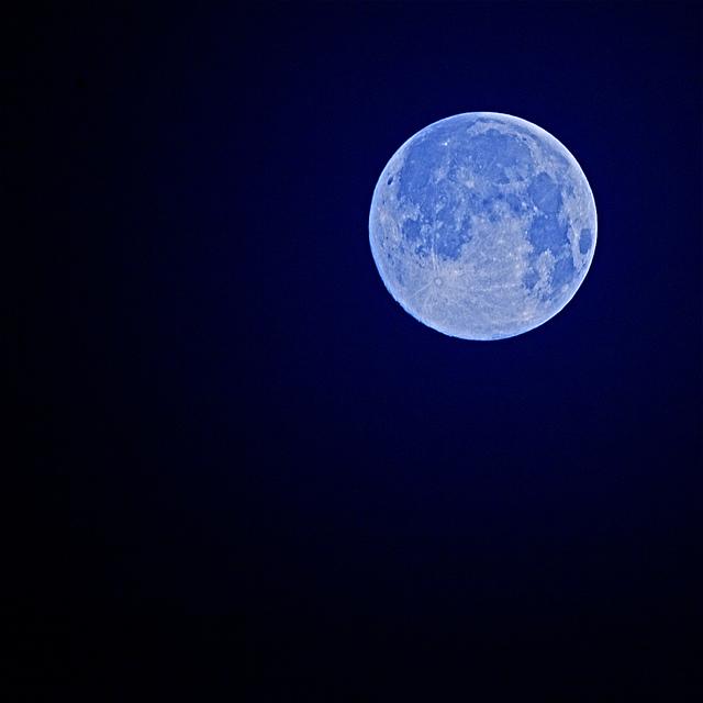 お月見の月